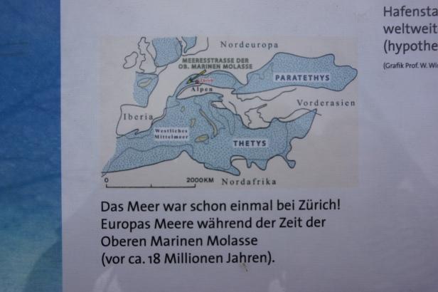 mapa Zurich en el mar