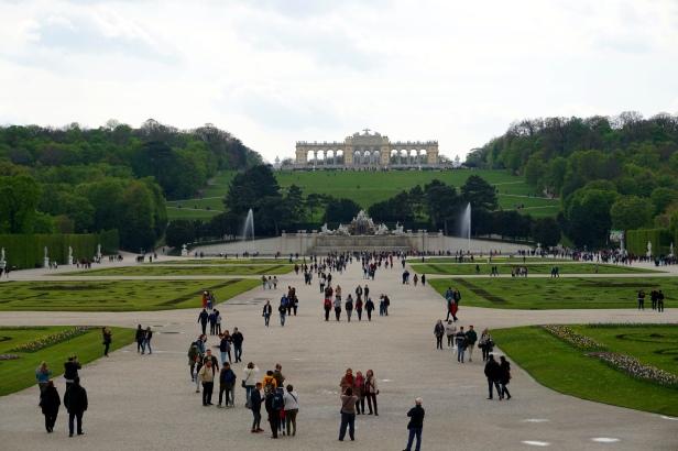 Gran Parterre Schönbrunn