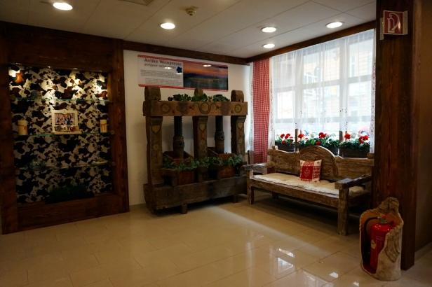 hall hotel Enziana