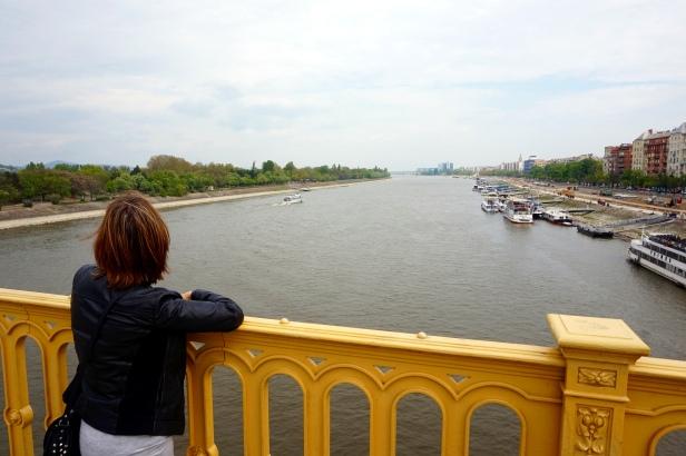 vistas a Isla Margarita Budapest
