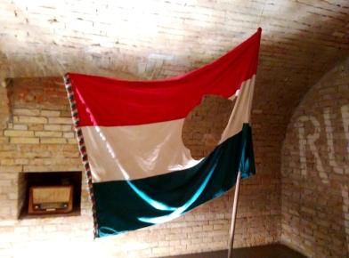 bandera rev 57